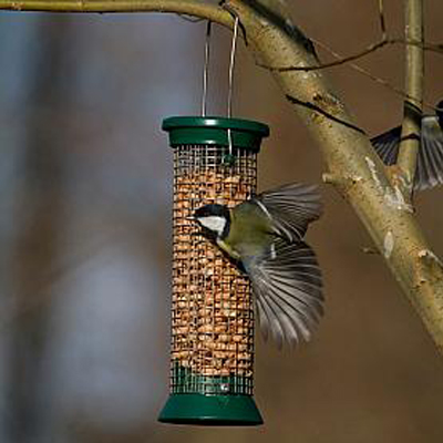 CJ Metal Peanut Feeder (Green) Small