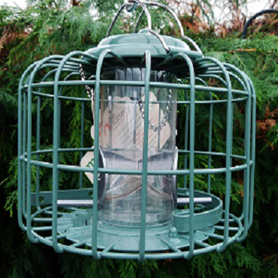 The Nuttery Mini Caged Feeders Seed