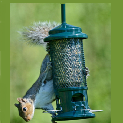 Pest Proof Gravity Feeders