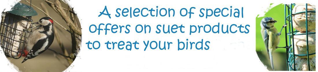 Suet-Specials3