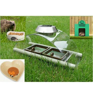 Hedgehog Accessories
